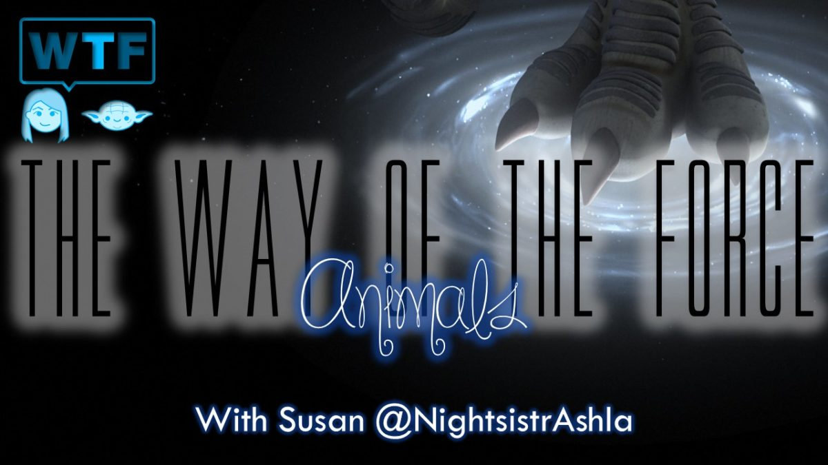 The Way of the Force: Animals